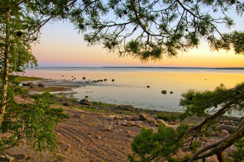 вот лэки фото пляжей финского залива живет украинская