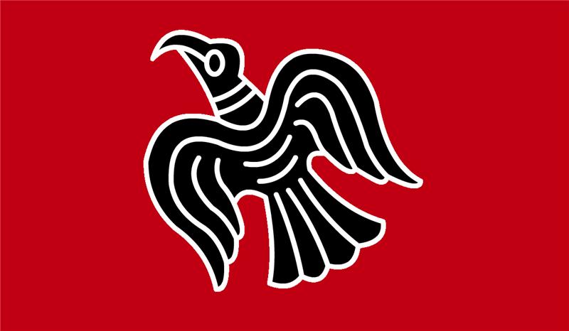 знамя викингов картинки бассейне